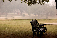 A wrought iron black metal bench under a tree in the Qutub Minar compound